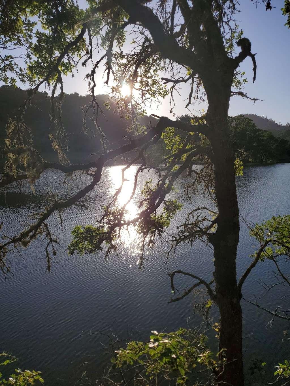 Uvas Reservoir County Park - park    Photo 5 of 10   Address: 14200 Uvas Rd, Morgan Hill, CA 95037, USA   Phone: (408) 779-9232