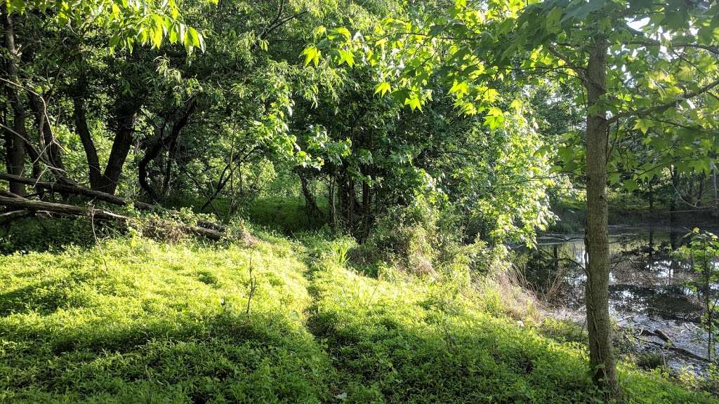 Provinces Park - park  | Photo 1 of 10 | Address: 1742 Disney Rd, Severn, MD 21144, USA | Phone: (410) 602-6898
