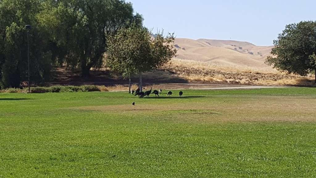 Dallas Ranch Park - park  | Photo 8 of 9 | Address: Prewett Ranch Dr, Antioch, CA 94531, USA | Phone: (925) 779-6950