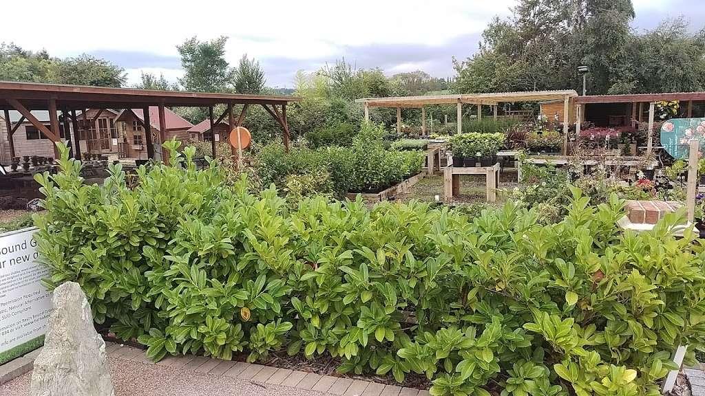 Abridge Garden Centre - florist  | Photo 9 of 10 | Address: Ongar Rd, Abridge, Romford RM4 1AA, UK | Phone: 01708 688558