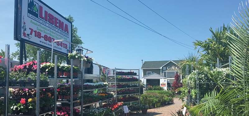 Lisena Garden Center & Nursery - store    Photo 6 of 7   Address: 12-5 Cross Bay Blvd, Broad Channel, NY 11693, USA   Phone: (718) 607-5413
