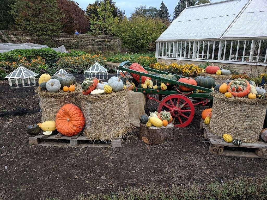 Myddelton House Gardens - cafe  | Photo 10 of 10 | Address: Bulls Cross, Enfield EN2 9HG, UK | Phone: 0300 003 0610