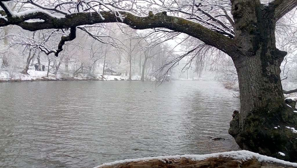 The Lake Viewing Area - park    Photo 5 of 10   Address: New York, NY 10024, USA