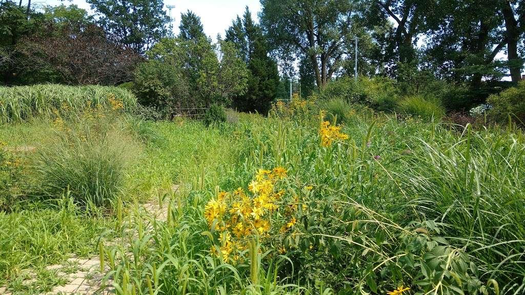 Triton College Botanical Garden - park  | Photo 2 of 10 | Address: 2000 5th Ave, River Grove, IL 60171, USA | Phone: (708) 456-0300