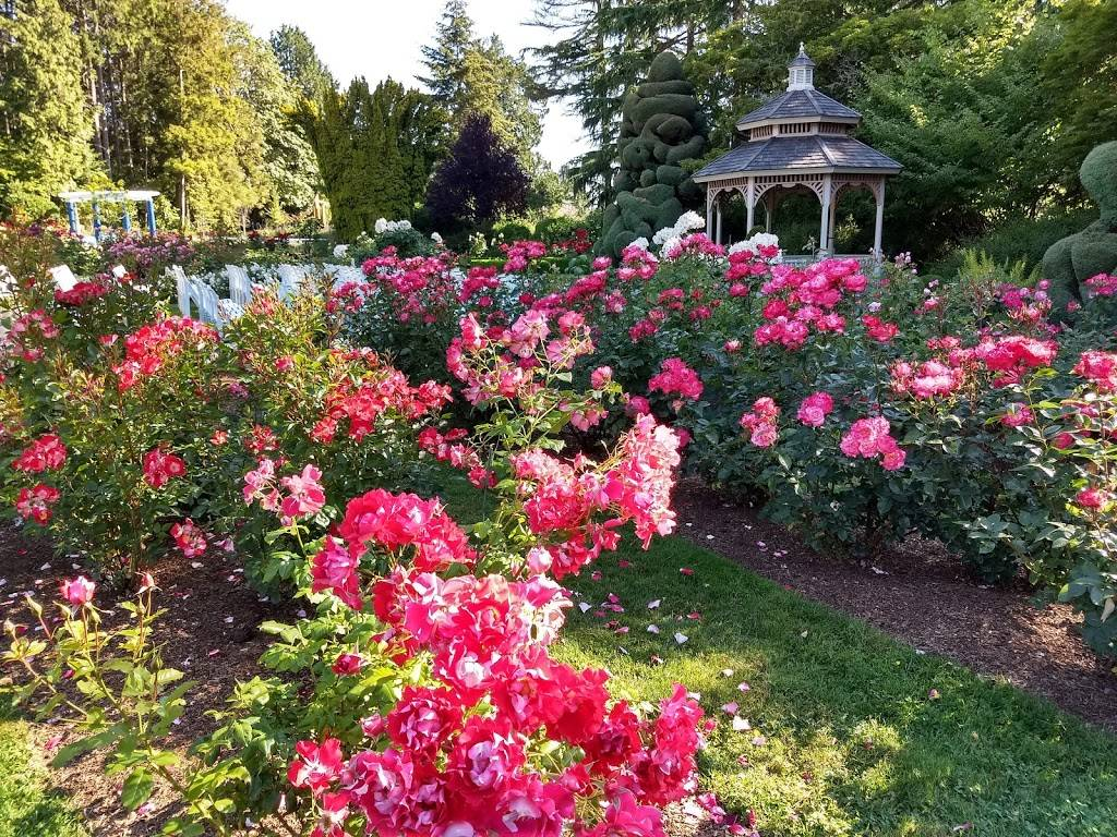 Woodland Park Rose Garden - park  | Photo 3 of 9 | Address: 750 N 50th St, Seattle, WA 98103, USA | Phone: (206) 684-4075