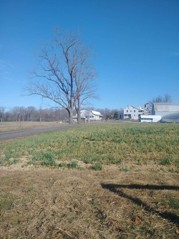 Amish Farm - store    Photo 3 of 5   Address: 27630 Westham Ln, Mechanicsville, MD 20659, USA