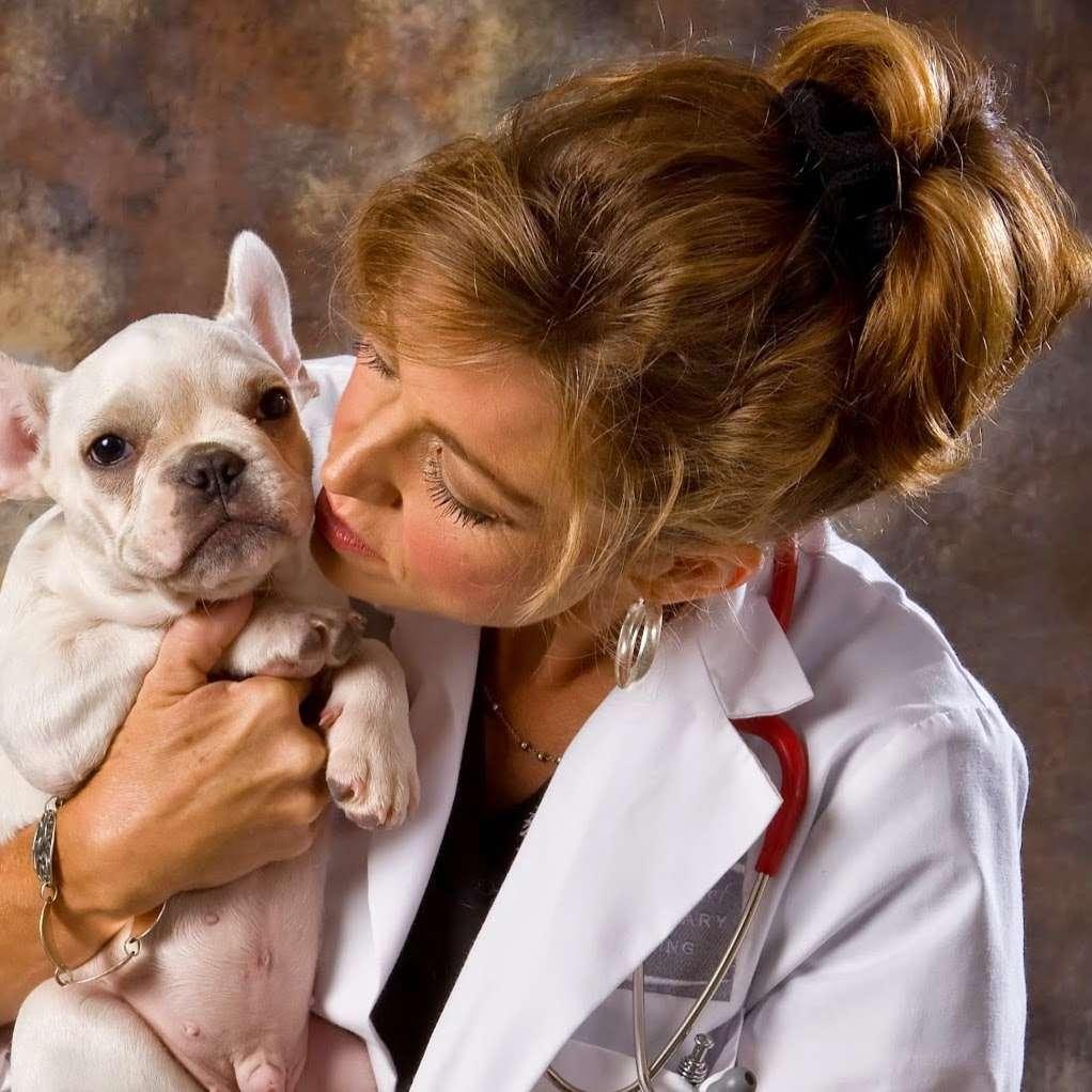 S&S Family Pet Hospital - veterinary care  | Photo 1 of 10 | Address: 15714 Huebner Rd, San Antonio, TX 78248, USA | Phone: (210) 579-0518