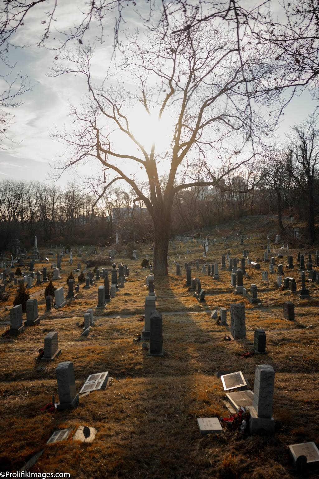 Historic Jersey City and Harsimus Cemetery - cemetery  | Photo 6 of 9 | Address: 435 Newark Ave, Jersey City, NJ 07302, USA | Phone: (201) 707-0738