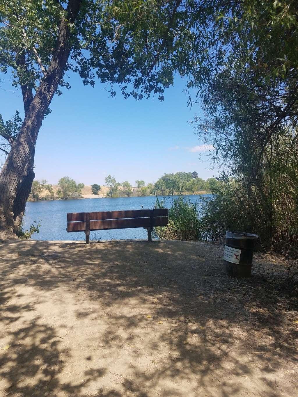 Boris Lake Bench - park  | Photo 4 of 7 | Address: Pleasanton, CA 94566, USA