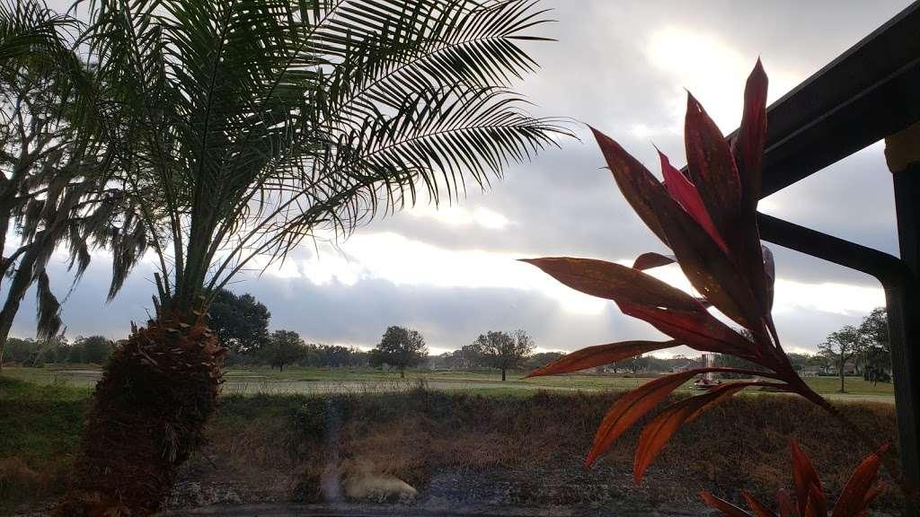 Majestic View Cottages - lodging    Photo 5 of 10   Address: Creekwood Ln, Mulberry, FL 33860, USA   Phone: (800) 519-3342