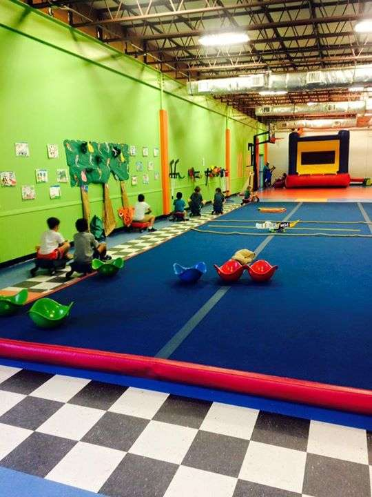 Lobo Active Learning Center & Gymnastics - gym  | Photo 1 of 10 | Address: 2500 Falcon Pass, Houston, TX 77062, USA | Phone: (281) 480-5626