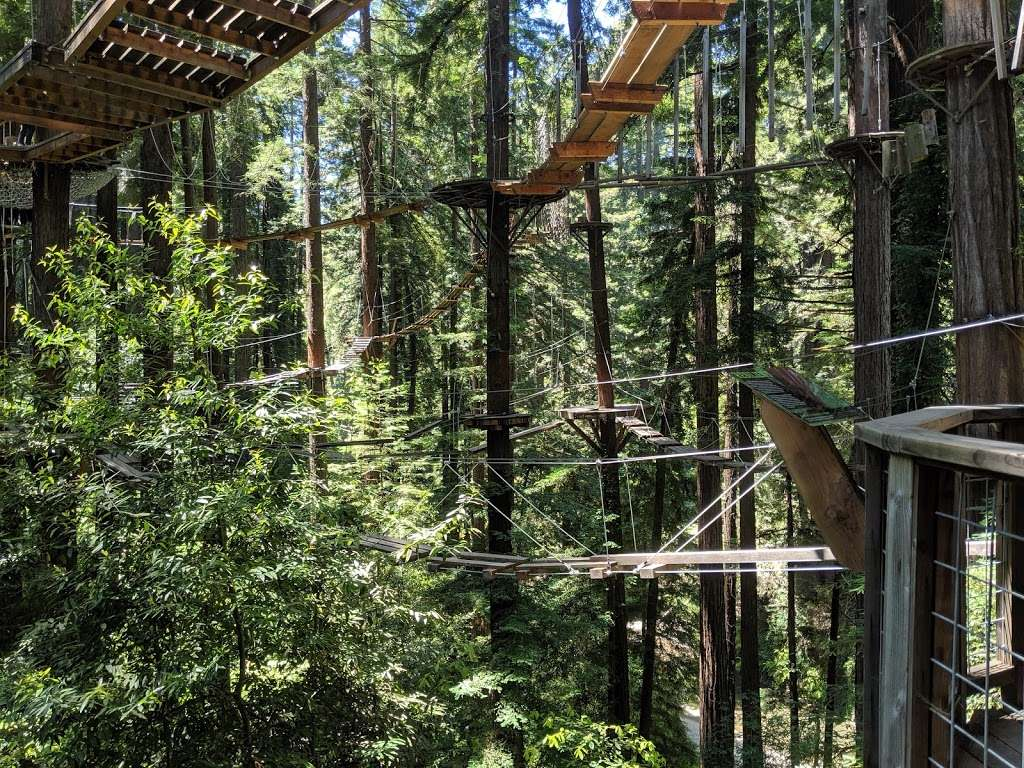 Redwood Canopy Tour - travel agency  | Photo 1 of 10 | Address: 17 Conference Dr, Felton, CA 95014, USA | Phone: (831) 430-4357