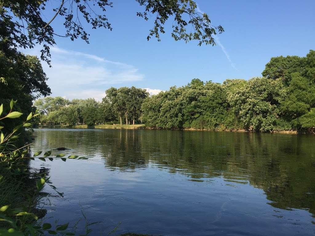 Turtle Hill Park - park  | Photo 3 of 10 | Address: Turtle St, Shorewood, IL 60404, USA