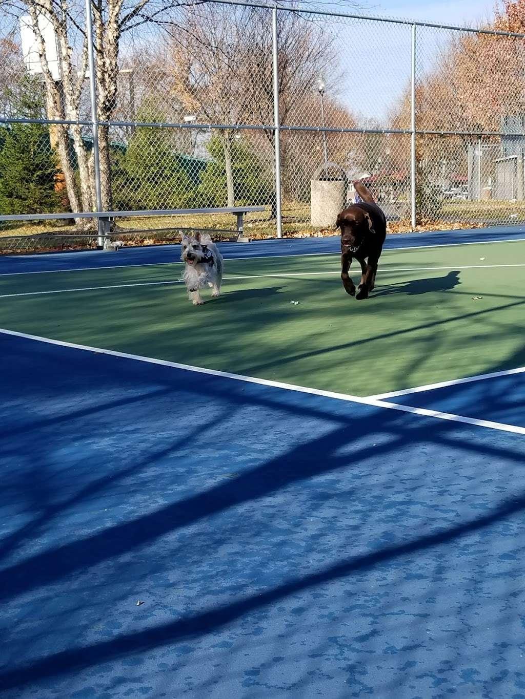Witte Field Johnson Field - park  | Photo 8 of 10 | Address: 39-43 Johnson Ave, Englewood Cliffs, NJ 07632, USA