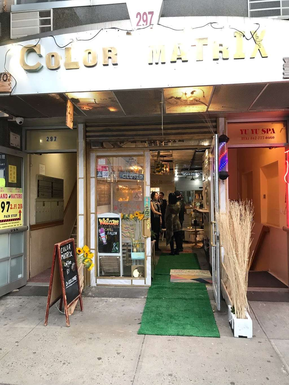 Color Matrix Cafesalon - hair care  | Photo 7 of 7 | Address: 297 Grand St, New York, NY 10002, USA | Phone: (212) 470-4555