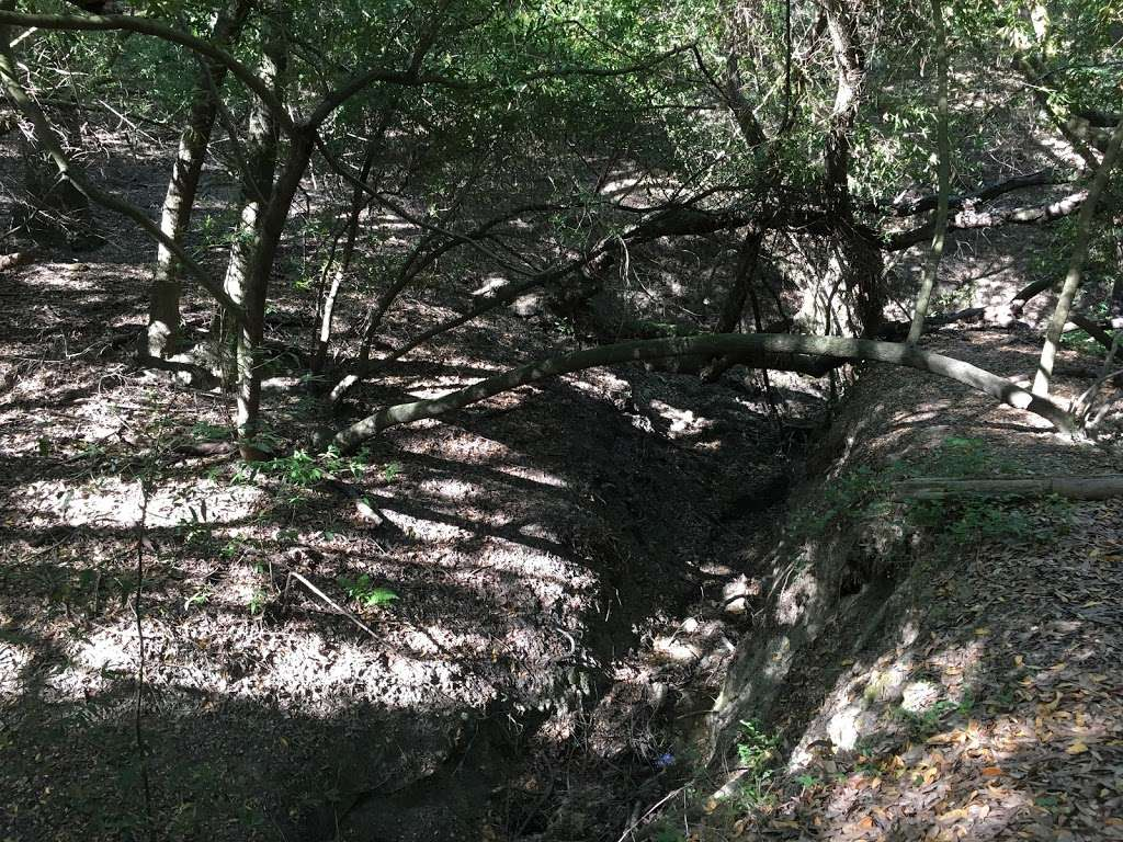 Rancho Laguna Park - park  | Photo 10 of 10 | Address: 2101 Camino Pablo, Moraga, CA 94556, USA | Phone: (925) 376-2520
