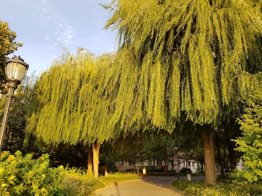 South Cove Park - park  | Photo 5 of 10 | Address: New York, NY 10280, USA | Phone: (212) 267-9700