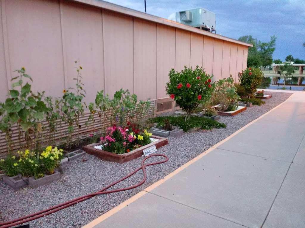 Crismon Elementary School - school  | Photo 5 of 10 | Address: 825 W Medina Ave, Mesa, AZ 85210, USA | Phone: (480) 472-4000