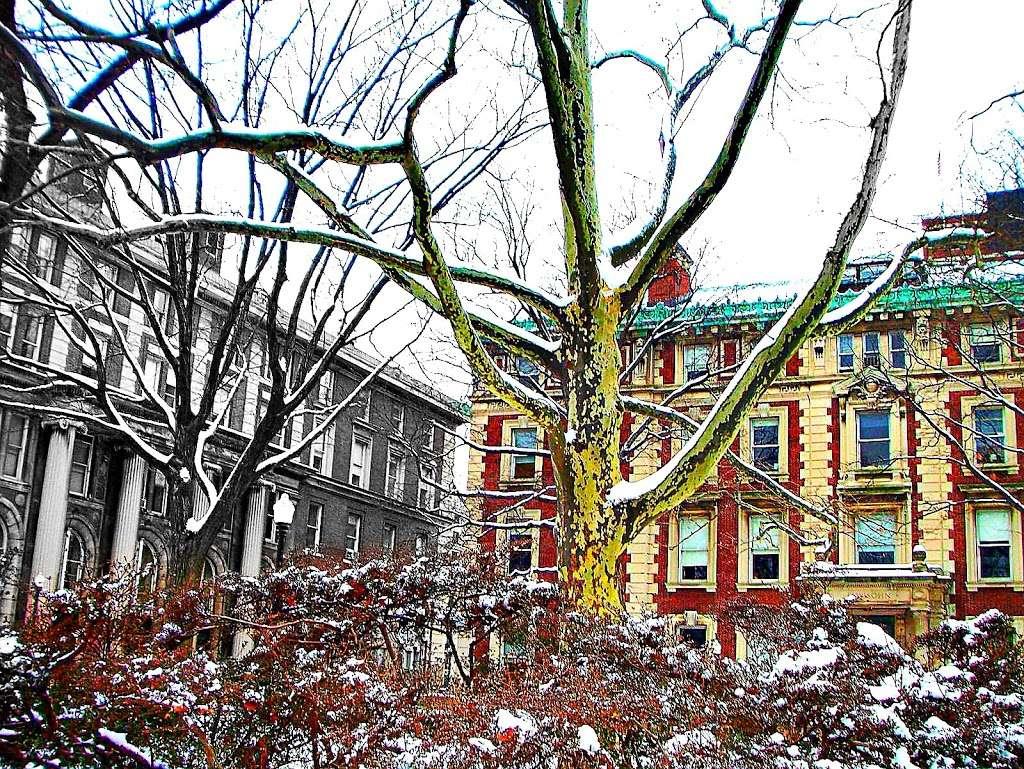Lewisohn Hall - university  | Photo 4 of 4 | Address: USA, Columbia University, 2970 Broadway, New York, NY 10027, USA