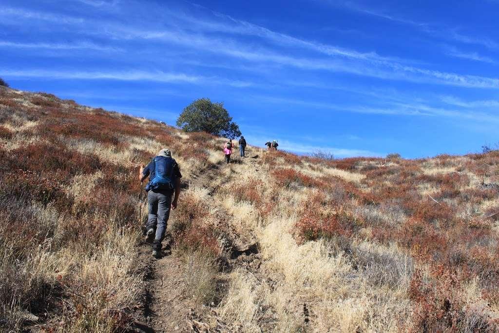 Artesian Spring Campgrounds - campground  | Photo 2 of 2 | Address: Santa Clarita, CA 91390, USA