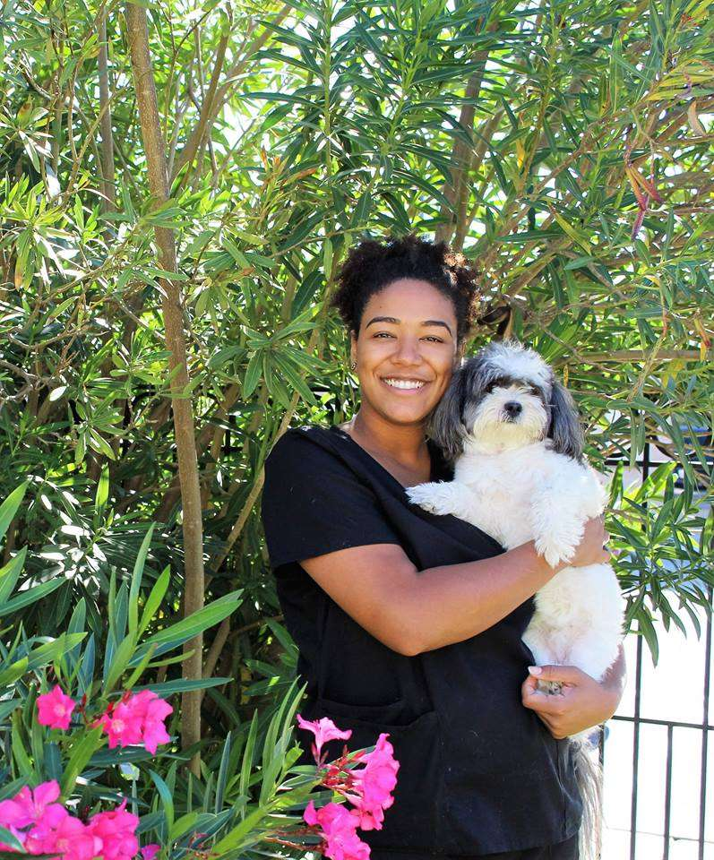 S&S Family Pet Hospital - veterinary care  | Photo 7 of 10 | Address: 15714 Huebner Rd, San Antonio, TX 78248, USA | Phone: (210) 579-0518