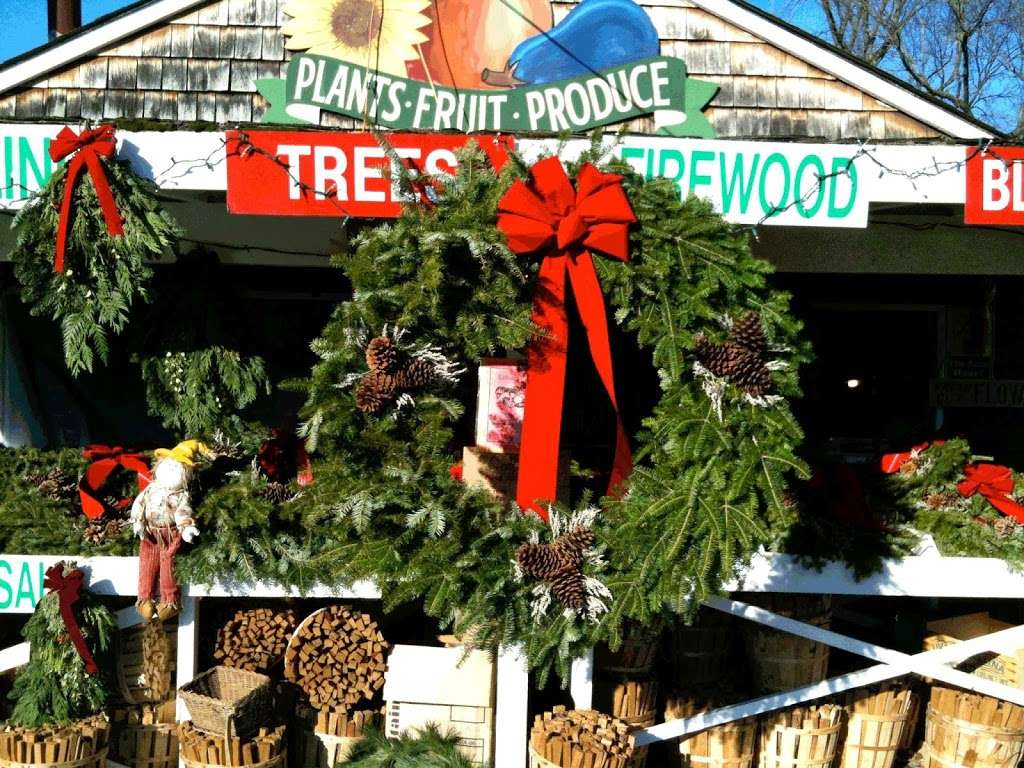 Country Gentleman Christmas Trees & Firewood - store    Photo 2 of 5   Address: 115 Washington Valley Rd, Warren, NJ 07059, USA   Phone: (732) 356-1178