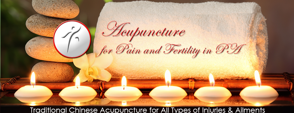 Acupuncture for Pain & Infertility - spa  | Photo 2 of 2 | Address: 6 Dickinson Dr #105, Chadds Ford, PA 19317, USA | Phone: (215) 264-3748