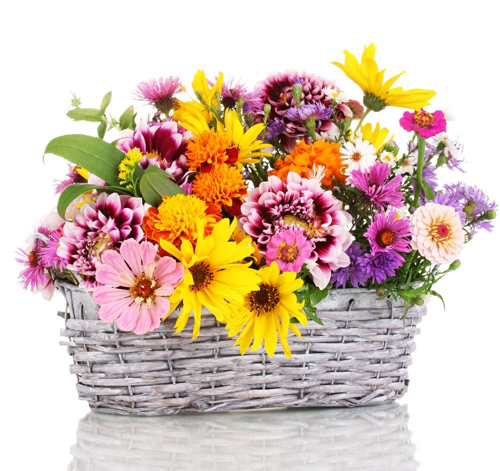 Carrolls Flowers - florist  | Photo 2 of 4 | Address: 1343 E Lycoming St, Philadelphia, PA 19124, USA | Phone: (215) 533-2884