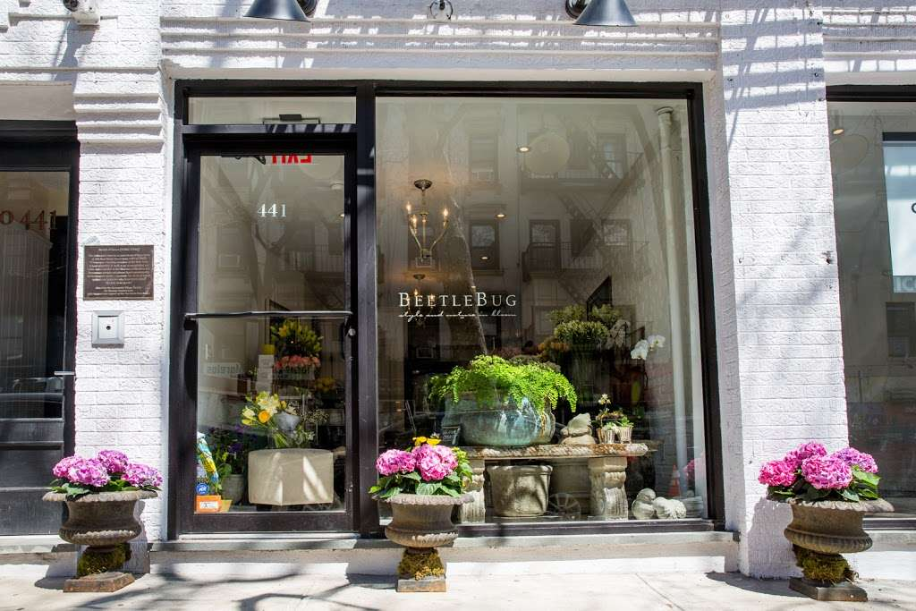 BeetleBug - florist  | Photo 1 of 6 | Address: 441 E 9th St, New York, NY 10009, USA | Phone: (646) 590-2420