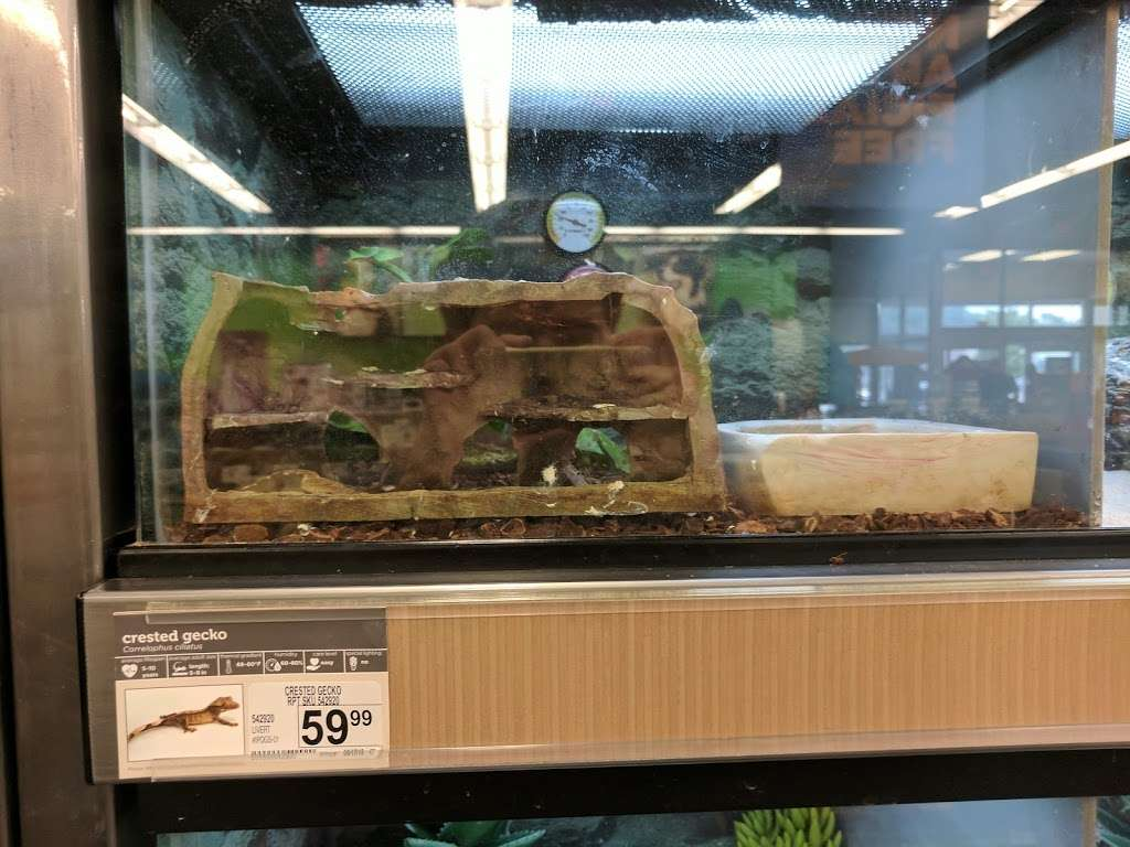 Petco - store  | Photo 2 of 10 | Address: 630 Town Center Dr, York, PA 17408, USA | Phone: (717) 767-4972