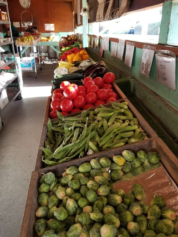 Palace of Fruit - store  | Photo 4 of 10 | Address: 8 Ely Rd N, Petaluma, CA 94954, USA | Phone: (707) 795-5311