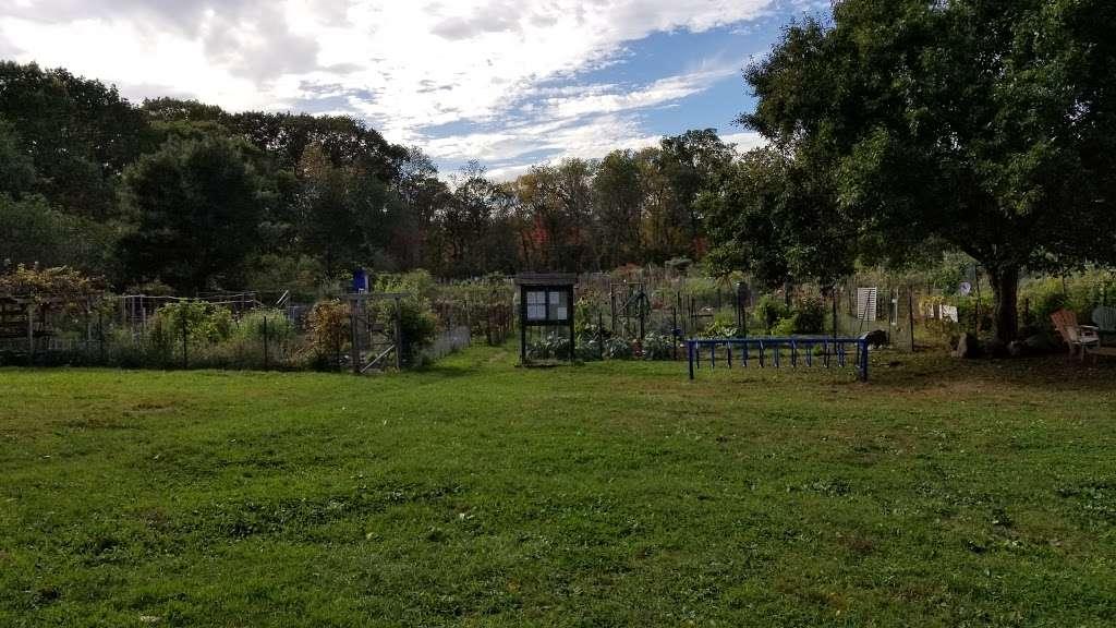 Rock Meadow Conservation Area - park  | Photo 7 of 10 | Address: Belmont, MA 02478, USA