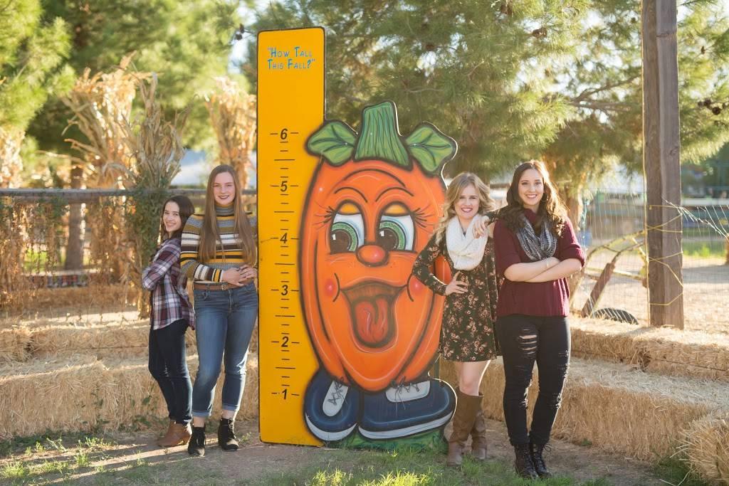 Mother Natures Farm - clothing store    Photo 7 of 10   Address: 1663 E Baseline Rd, Gilbert, AZ 85233, USA   Phone: (480) 892-5874