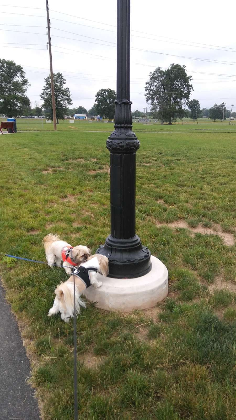 Park at 4th - park  | Photo 4 of 10 | Address: Quakertown, PA 18951, USA | Phone: (215) 536-5001