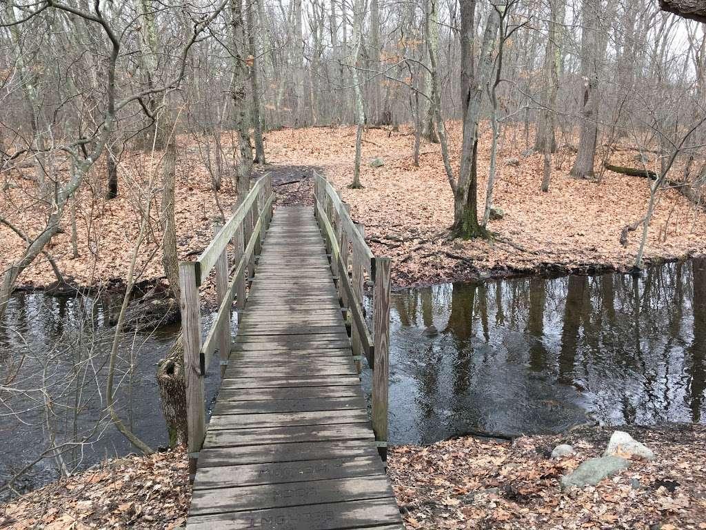 Rock Meadow Conservation Area - park  | Photo 4 of 10 | Address: Belmont, MA 02478, USA