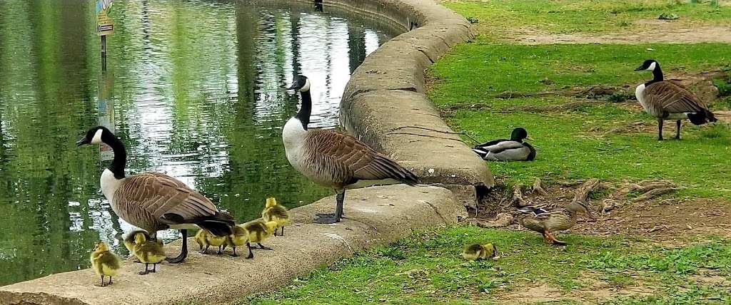 Pangborn Park - park  | Photo 10 of 10 | Address: 591 Pangborn Blvd, Hagerstown, MD 21740, USA | Phone: (301) 739-8577