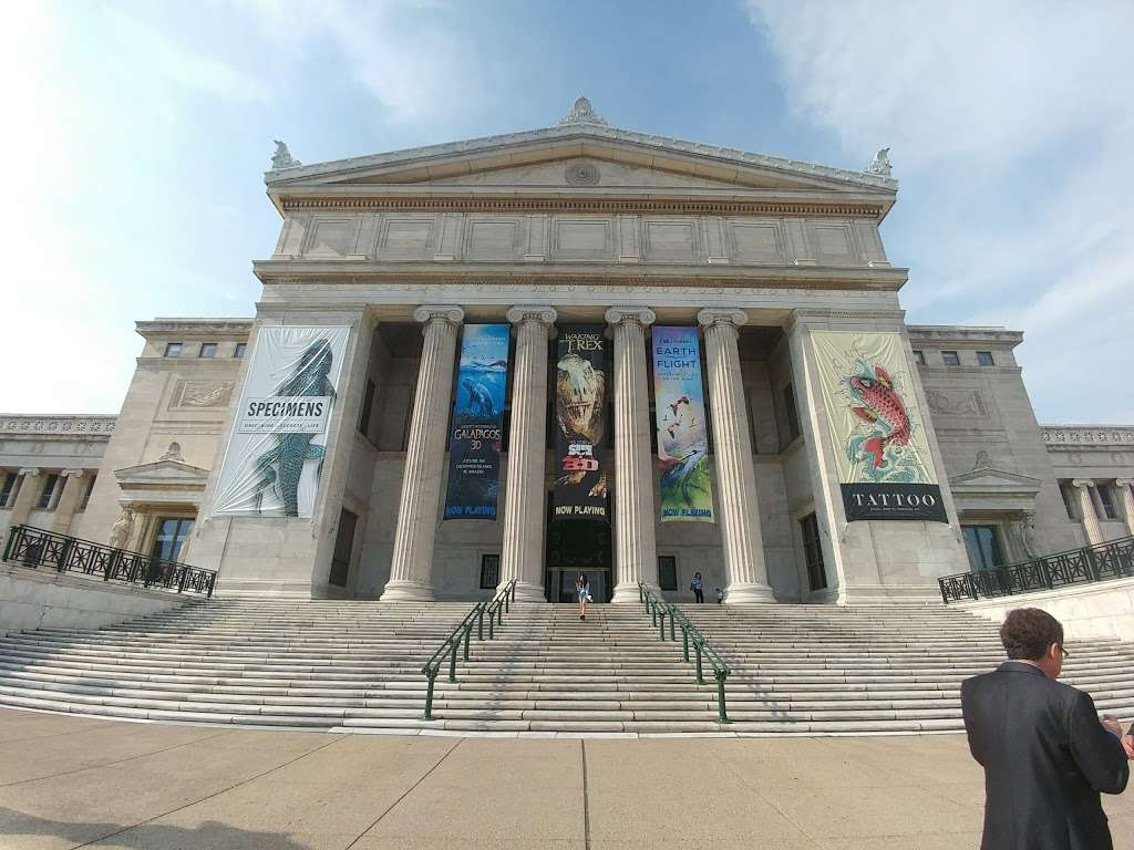 The Field Museum - museum  | Photo 3 of 10 | Address: 1400 S Lake Shore Dr, Chicago, IL 60605, USA | Phone: (312) 922-9410