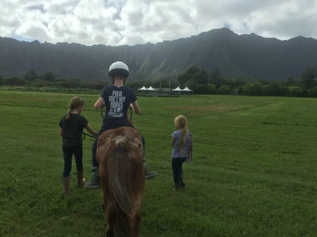 Hawaii Polo Lessons - travel agency  | Photo 7 of 8 | Address: 41-1062 Kalanianaʻole Hwy, Waimanalo, HI 96795, USA | Phone: (808) 421-9874