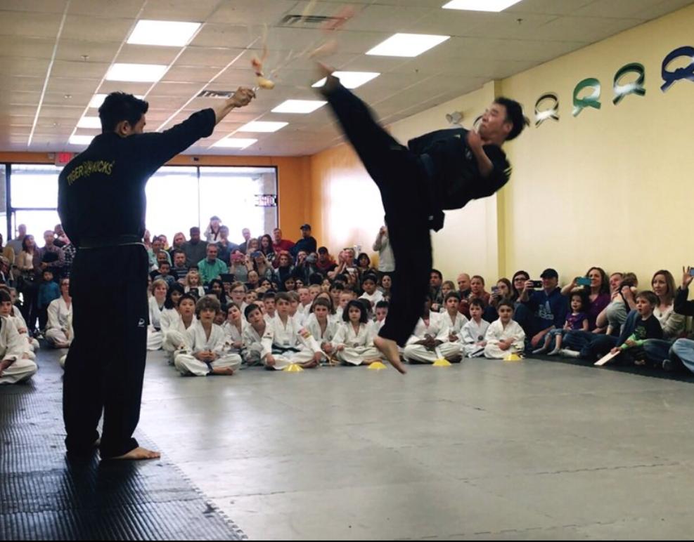 Master LEEs Tiger Kicks Martial Arts Tae kwon Do - gym  | Photo 7 of 10 | Address: 317 E Street Rd, Warminster, PA 18974, USA | Phone: (215) 444-0899