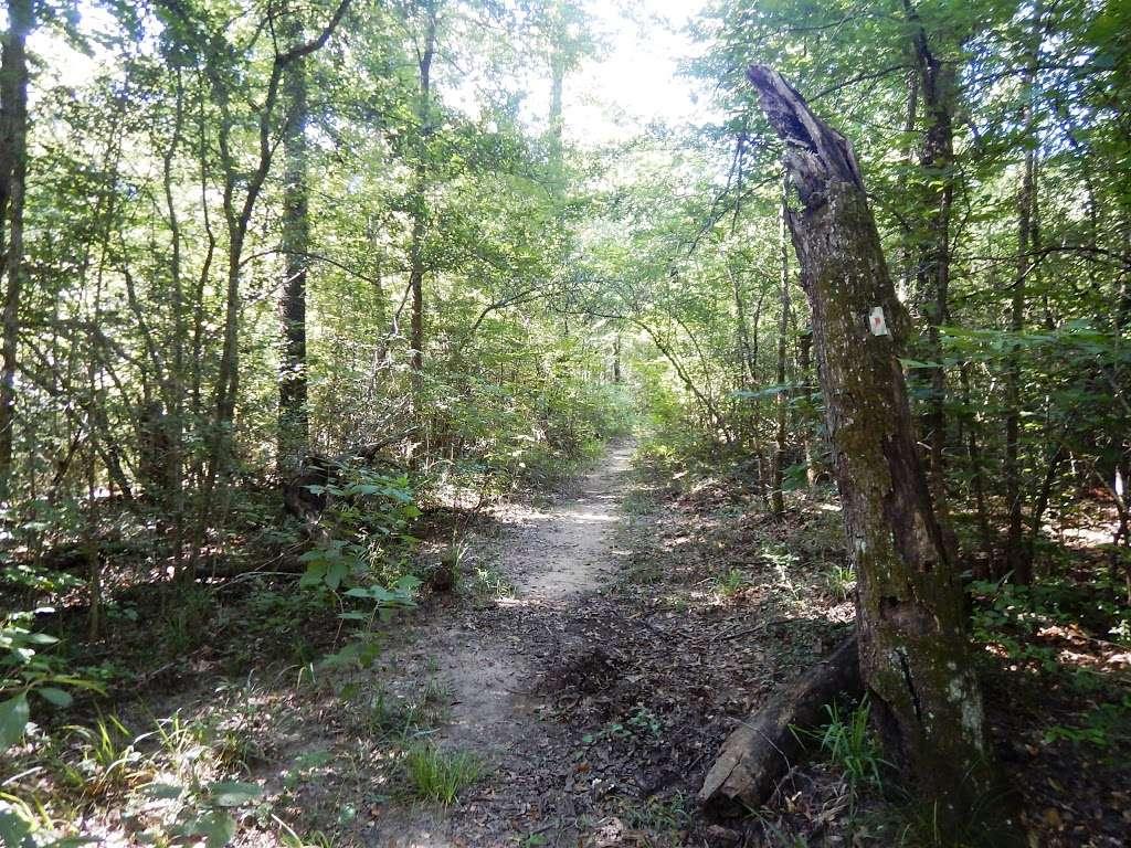 Lone Star Trailhead #4 - park  | Photo 1 of 9 | Address: FM 149, Montgomery, TX 77356, USA | Phone: (936) 344-6205