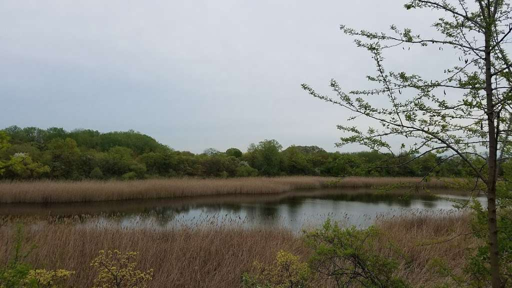 Ridgewood Reservoir - park    Photo 2 of 9   Address: Jackie Robinson Pkwy, Brooklyn, NY 11208, USA   Phone: (212) 639-9675