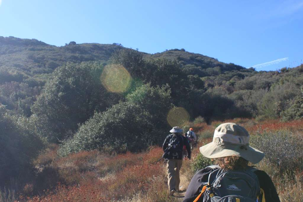Artesian Spring Campgrounds - campground  | Photo 1 of 2 | Address: Santa Clarita, CA 91390, USA