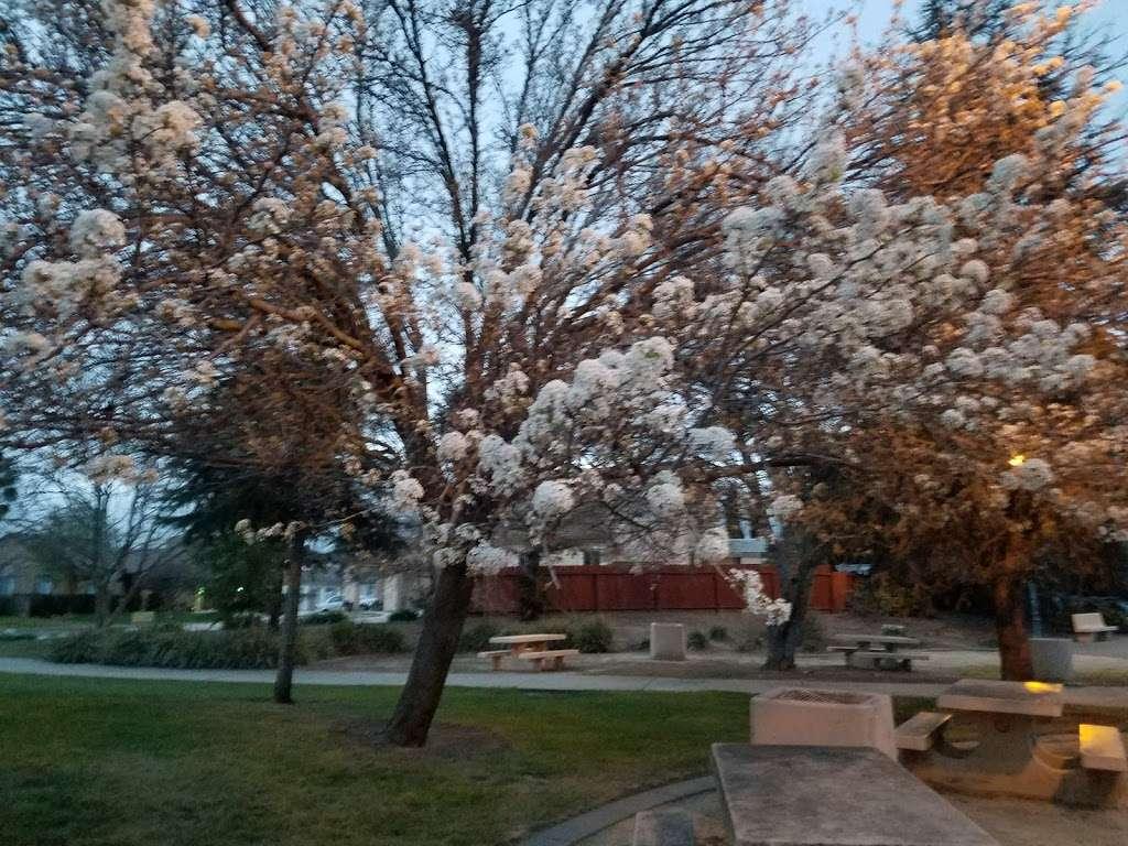 Lawler Falls Park - park    Photo 4 of 10   Address: 1401 Hammond Ln, Suisun City, CA 94585, USA