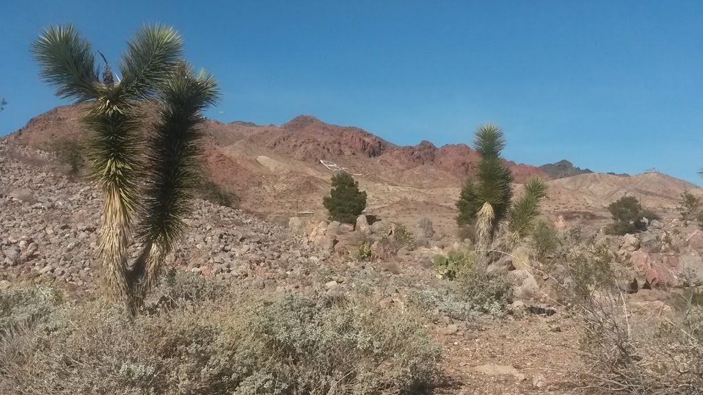 Nature Discovery Trail and Rock Garden - park  | Photo 10 of 10 | Address: Boulder City, NV 89005, USA