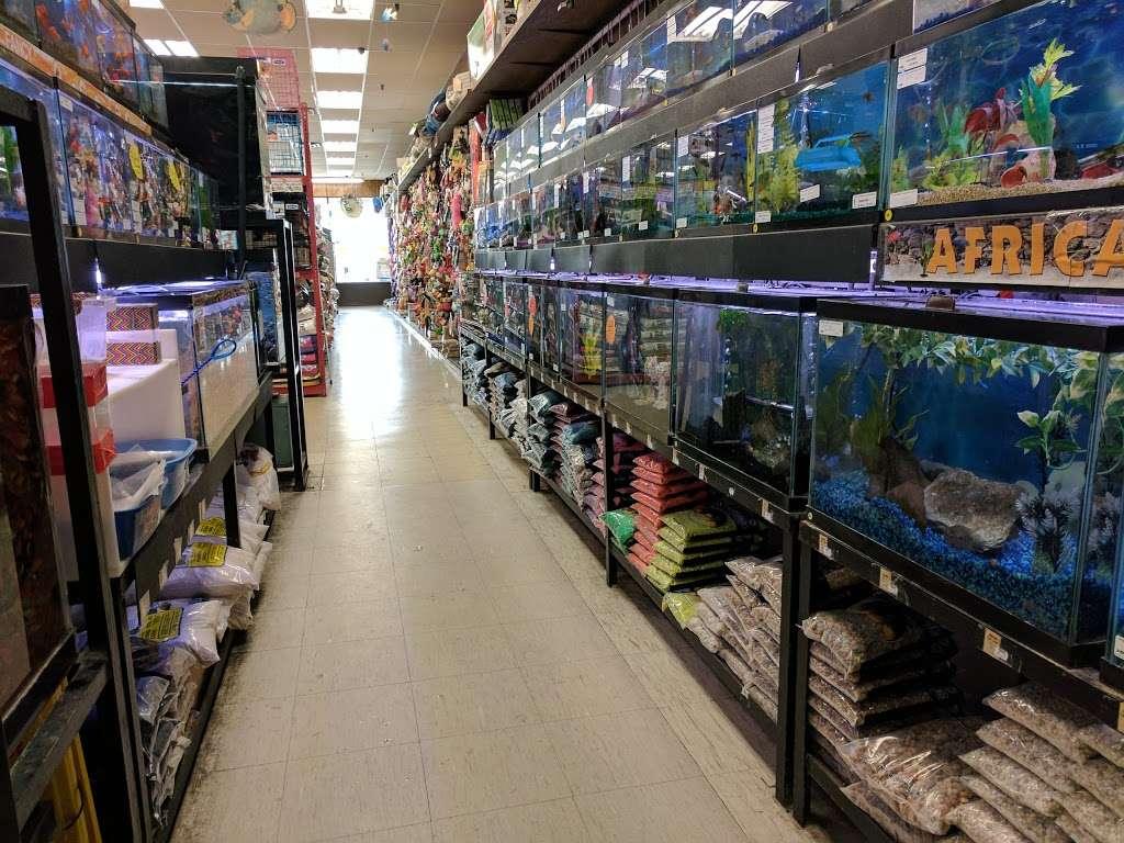 Petland Discounts - Jersey City - pet store  | Photo 3 of 10 | Address: Rt 440 & Kellogg Street, Stadium Plaza, Jersey City, NJ 07305, USA | Phone: (201) 435-9217