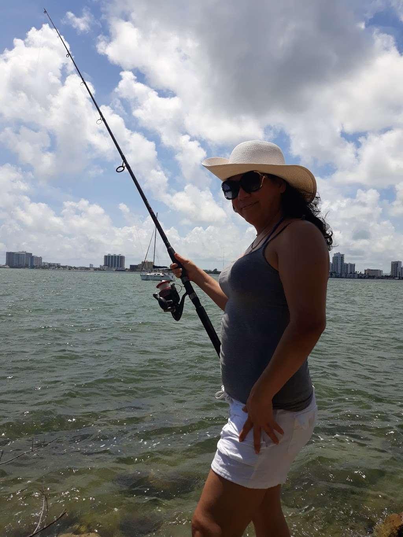 Edward K. Buckley Island - park  | Photo 10 of 10 | Address: Miami Beach, FL 33141, USA