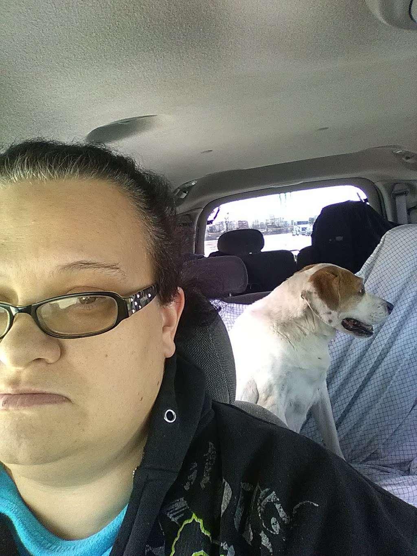 Animal Welfare League - pet store  | Photo 4 of 4 | Address: 6224 S Wabash Ave, Chicago, IL 60637, USA | Phone: (773) 667-0088