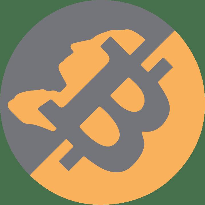 bitcoin rise 2021