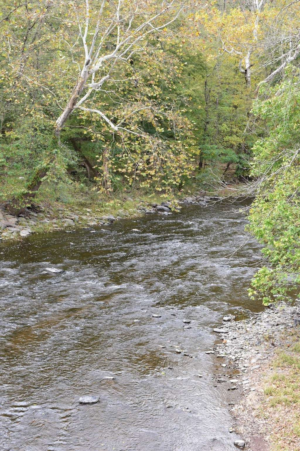 The Tohickon Creek At the Point Pleasant Bridge - park  | Photo 3 of 10 | Address: River Rd, Pipersville, PA 18947, USA