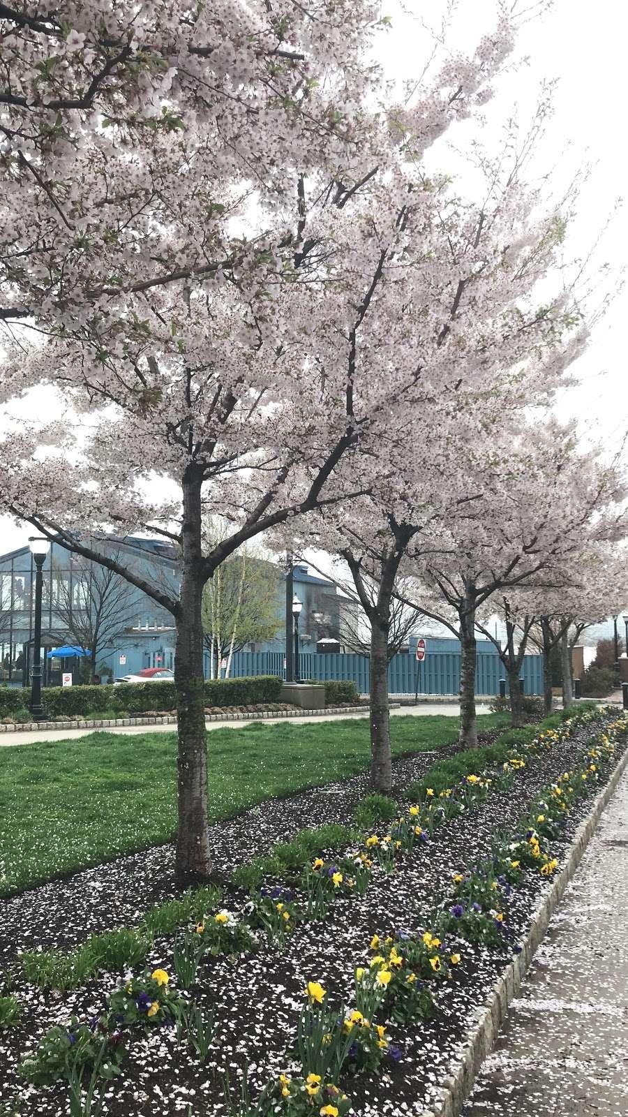 Weehawken Waterfront Pershing Circle - park    Photo 3 of 10   Address: Weehawken, NJ 07086, USA